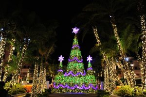 GulfstreamPark_Symphony of Lights 2017