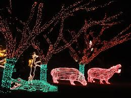 Miami Vacation Zoo Lights 2017