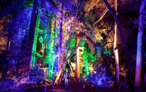 santa's enchanted forest Tropical park 2017