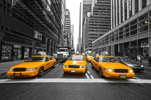 New York City fall activities